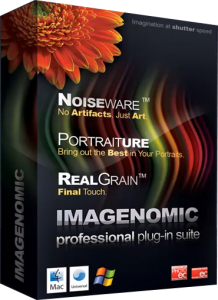 Imagenomic Noiseware / Portraiture / RealGrain - Plug-In for Photoshop (2012) Английский