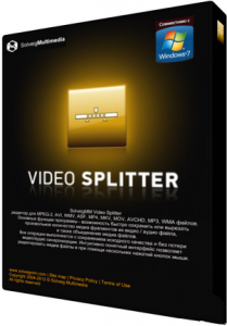 SolveigMM Video Splitter v3.6.1301.16 Final (2013) Русский