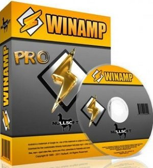 Winamp Pro 5.65 Build 3438 Final Portable by Baltagy (2013) Multi/Русский
